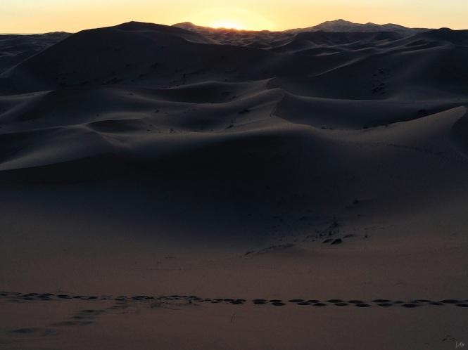 desierto 5