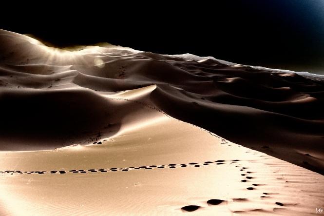desierto23