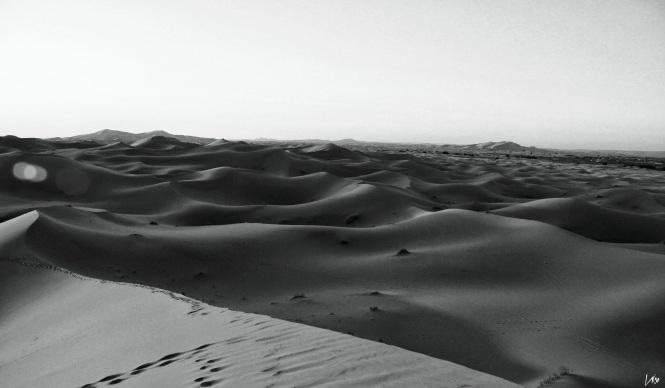 desierto24