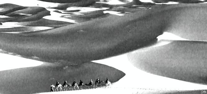 desierto25