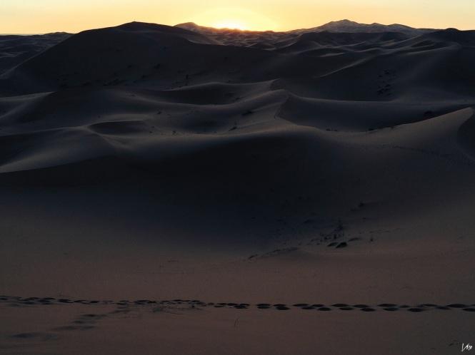 desierto29